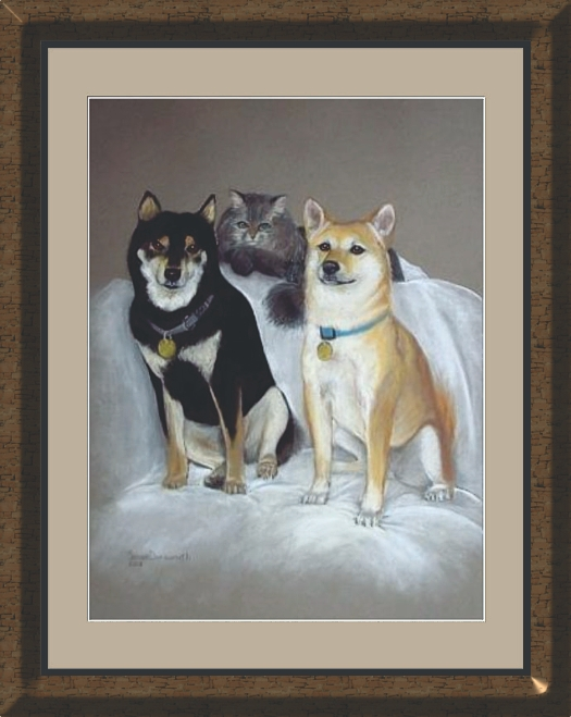 Pet Portraits in Pastel